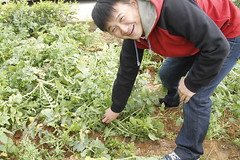 produce(0.0), agriculture(1.0), farm(1.0), soil(1.0), gardener(1.0), farmworker(1.0), crop(1.0),