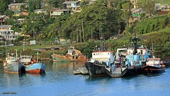 boats J78A0590