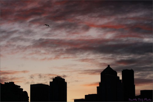 Skywatch: Seattle Morning Sky