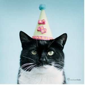 Cats With Hats Happy Birthday Gif