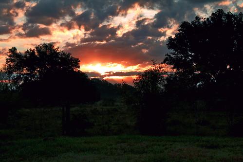 sky sun clouds sunrise texas sherry 2009 saturdaymorning brazosbendstatepark exhilarating 3661 texassunrise project3652009 project36612009 3661days hikeinthepark myalonetime