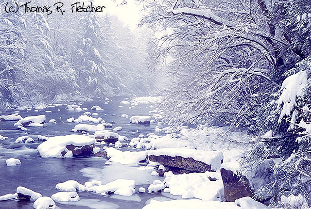 Cranberry River, heavy snow, Monongahela National Forest