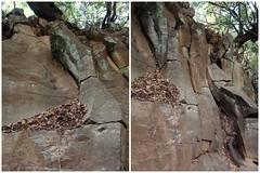 Basalt flakes