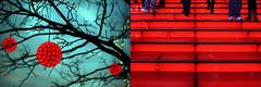 week 2: red by jodi*mckee