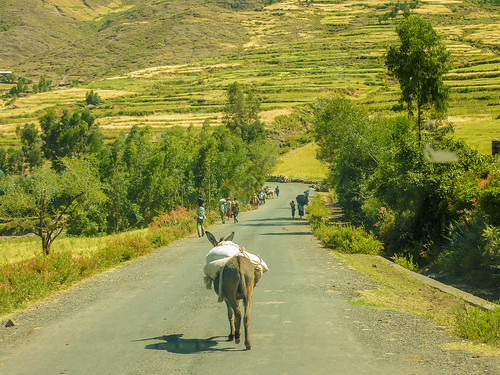 Road to Lalibela, Ethiopia