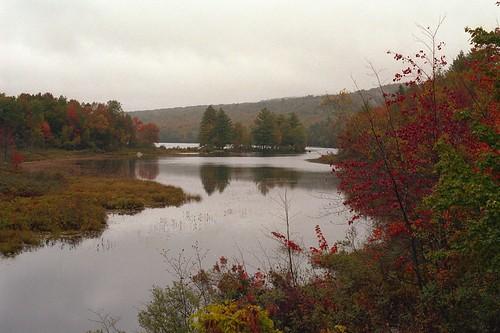 statepark park vacation lake reflection water rain river fallcolor maine kodakportra400vc nikonf5 nikkor50mmf14 vuescan nikoncoolscan5000ed notektar100inektar100group