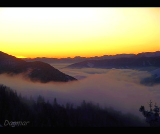 06.11.2009 - Good morning