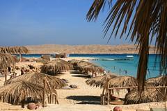 Mahmya-Island, Red Sea