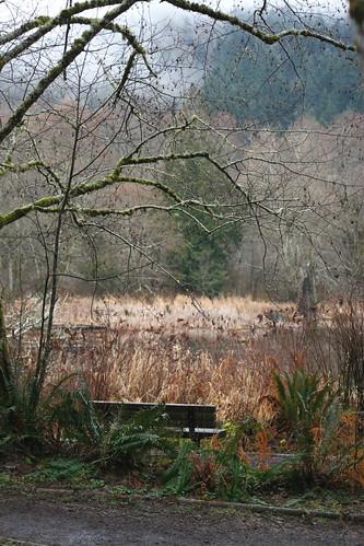 McLane Creek