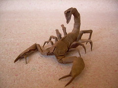 Paper Scorpion 8 Photos | Escorpion (Scorpion) | 724