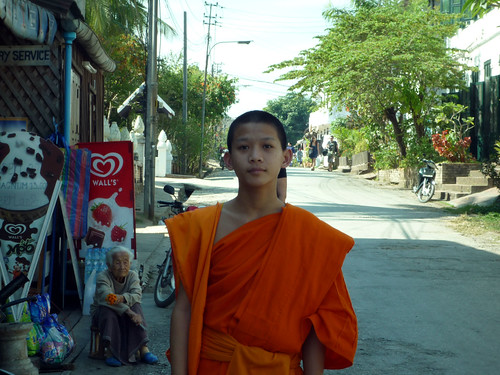 Laos 1 628.Lama calle posado
