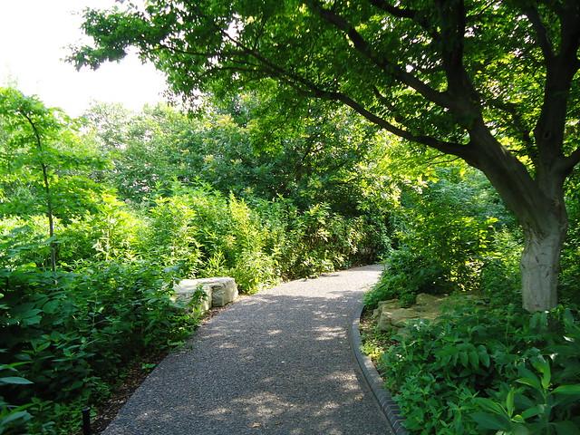 Kemper Missouri Native Shade Garden Flickr Photo Sharing