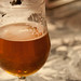 Pliny the Elder 014