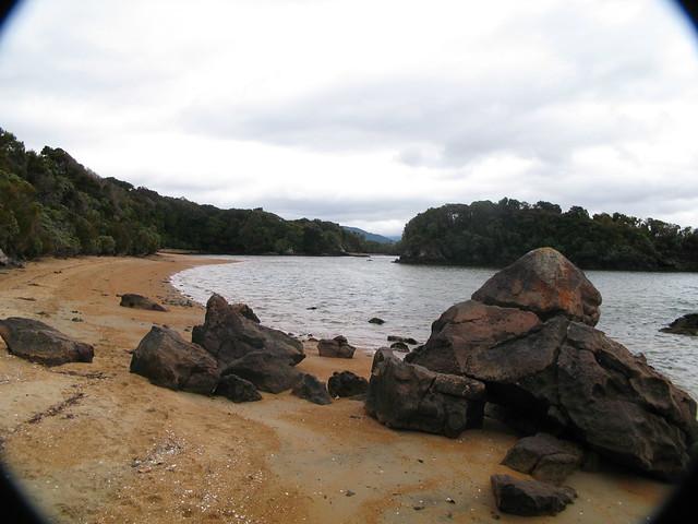 Ulva Island, Stewart Island, NZ