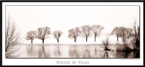 trees snow cold reflection tree nature water landscape mirror dallas pond nikon texas snowy frisco d700 frigit