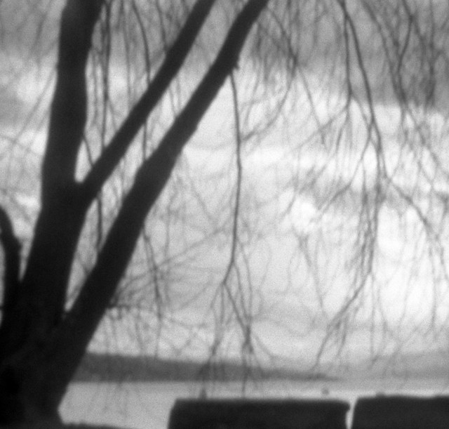 at the lake (Pinhole)