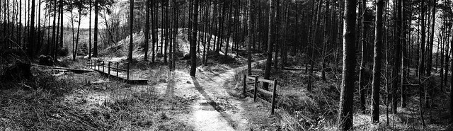 Macclesfield Forest Panorama...