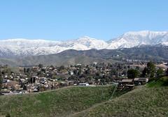 The San Bernardinos in White 2-2009