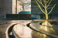 Reflection   Kaunas #54/365