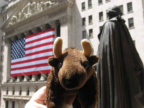 Buddy at NYC's Federal hall