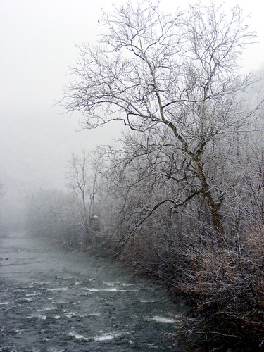 county winter mist snow tree fog creek md wind ripple scenic maryland blowing wills tranquil cumberland narrows allegany thenarrows willscreek javcon117 frostphotos