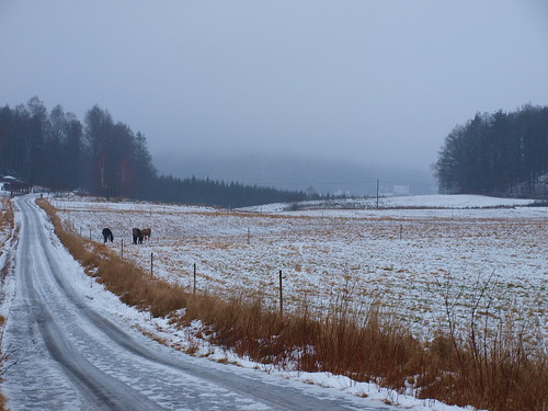 landscape sweden country olympus landskap kinna gullberg e520 olympuse520 100commentgroup kinnahult peternyhlén