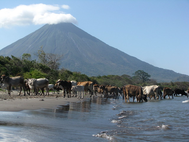 Ometepe Beach - Sweet and Savoring