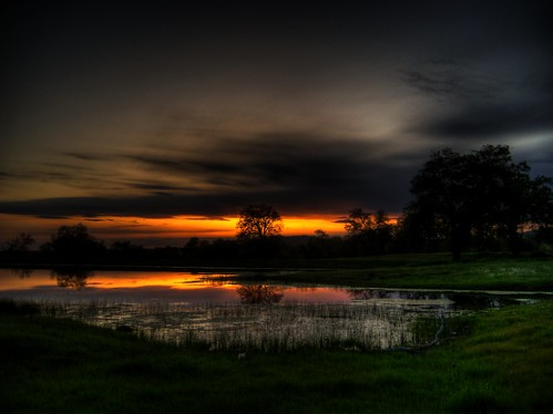 california trees sunset shadow orange usa cloud black reflection tree green water grass yellow twilight pond oak central experiment 186 fresno valley hdr demonstraion photomatix