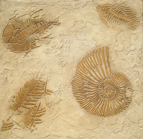 Fossil stencils for raised plaster stenciling. Beautiful wall stencils by Cutting Edge Stencils.