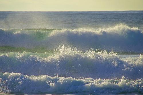 Making Waves, Bondi by Dovid100