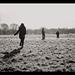 A wintery walk by zoehd