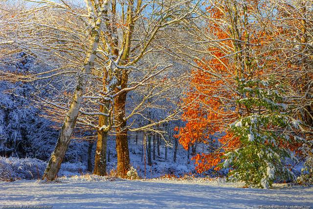 Autumn Snow, Piscataquis River