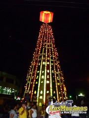 Inauguración Gran Arbolito de Navidad