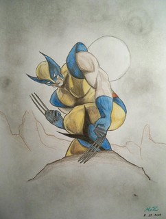 Wolverine pencil drawing (5)