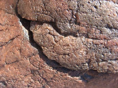 Desert Varnish: Biogeochemistry