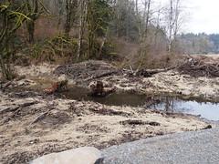 New Drainage Creek