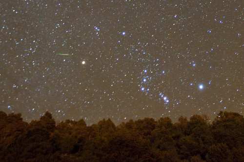 Orionid Meteor Shower Peaks October 20/21!