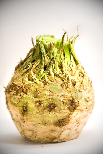 celeriac whole vignette