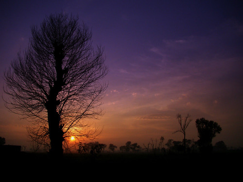 camera blue autumn trees winter pakistan sunset sky orange cloud tree field by clouds digital canon evening photo purple shot sony captured taken cybershot h 50 challenge cyber sialkot sajjad h50 tufail sonyphotochallenge