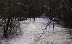 Souhegan River Flooding