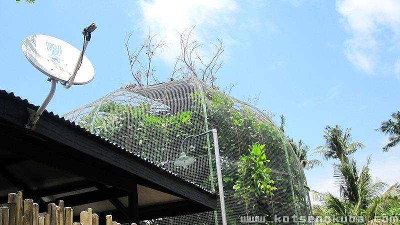 Kabayan beach resort aviary
