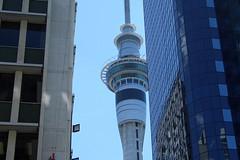 New Zealand 2008 - Auckland