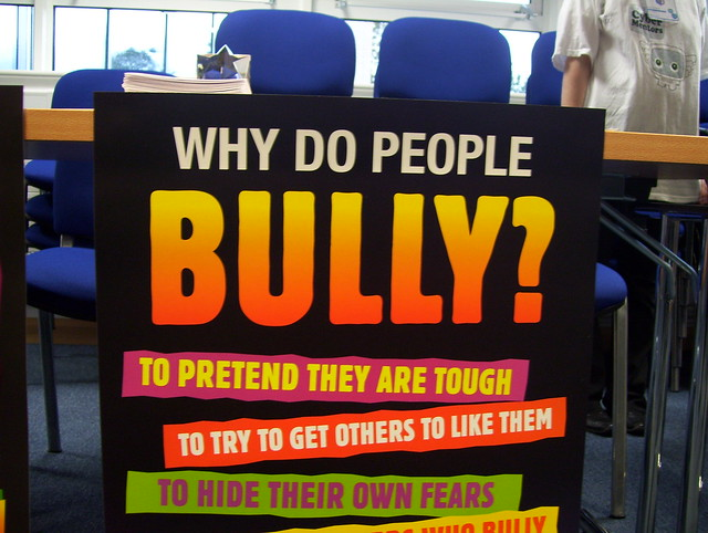 why do people bully National bullying and sexual  what did you do to stop the bullying post.