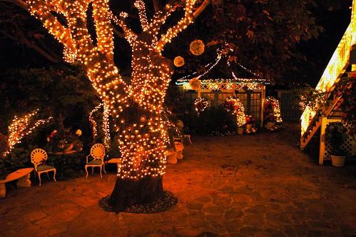 Romantic garden romantic garden at night for A night at the garden