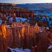 Bryce Canyon, Utah, USA by Xindaan