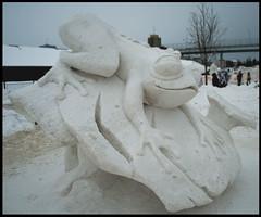 Snow-frog