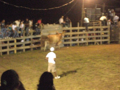 Random dude facing off the bull