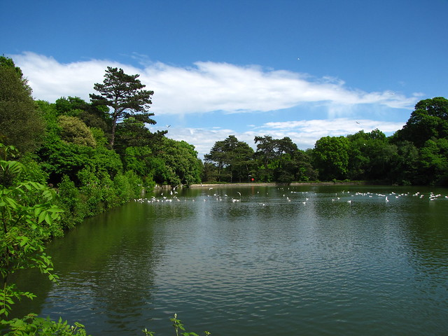 Header of Alexandra Park, Hastings