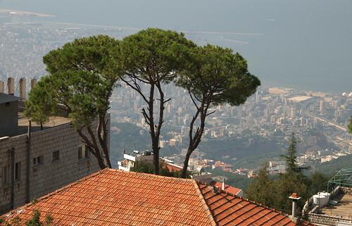 lebanon pine nikon view beirut meri serge melki beit jabal d300 libnan maten 18200mmf3556gvr matn beitmeri majesticpinetrees