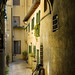 Florence, Italy (side alley)